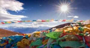 Tibet Day 2014